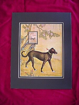 Picture of Prize Dog Great Dane type stamp with mounted stamp 1972 China