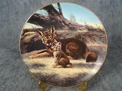 The Red Wolf Collectors Plate By Will Nelson From Last Of Their Kind Series 1989