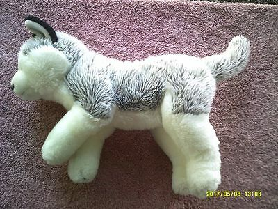 Plush Frosted Grey & White Siberian Husky or Wolf with Blue Eyes