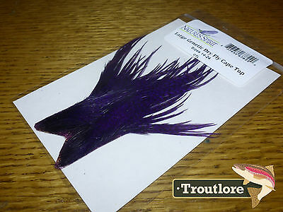 Nature's Spirit Purple Gr Genetic Dry Fly Hackle Cape Top - New Whiting Feathers
