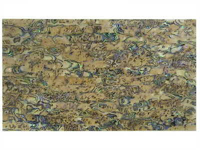 Incudo™ New Zealand Hear Abalone Laminate Shell Veneer Sheet, 240 x 140mm