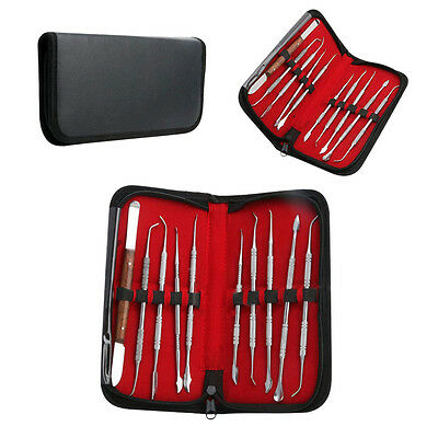 10pcs/set Stainless Steel Dentist Teeth Wax Carving Tools Instrument Kit New