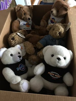 Hard Rock Cafe teddy bears collection - 17 Different locations bears