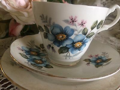 Pretty Old Foley Cup Saucer And Plate