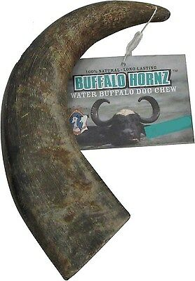 Water Buffalo Horn Dog Treat  - 100% Natural Dog Chew Toy