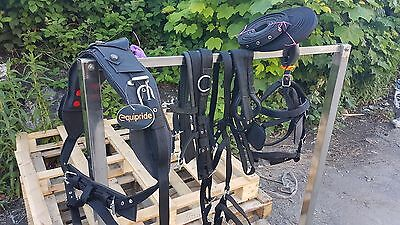 Equipride Synthetic Driving Harness Set in Black Size X Full to Mini Shetland