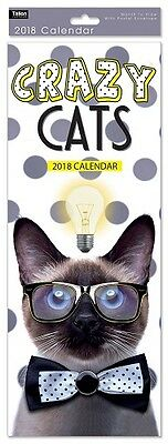 2018 Slim Month To View Spiral Bound Funny Photo Wall Calendar - Crazy Cat