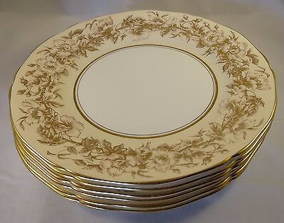 6 Adderley China Gold White Cream Floral Scalloped Pattern H461 Dinner Plates VG