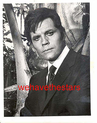 Vintage Jack Lord As Steve McGarrett HAWAII FIVE-O '70 Publicity Portrait