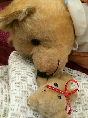 Antique Old Farnell Bear with Provenance - 1920 - 1930's Mohair Fully Jointed ❤