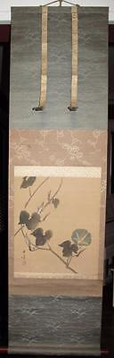 19th Century Asian Scroll Painting Morning Glory China Japan? Signed Master?