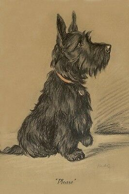Scottish Terrier Dog BEGGING by Lucy Dawson 1940 LARGE New Blank Note Cards