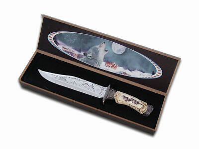 Wolf Knife (28cm) in Wood Box - Brand New