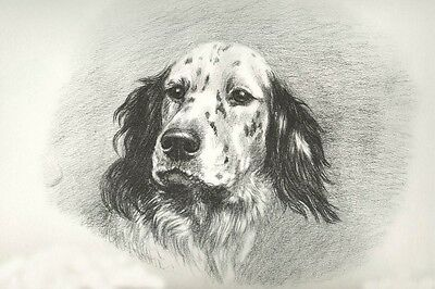 English Setter Dog Portrait Marguerite Kirmse 1920s LARGE New Blank Note Cards
