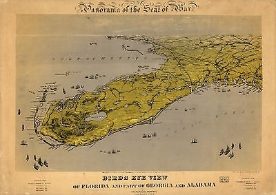 12x18 inch Reprint of American Military Map Florida