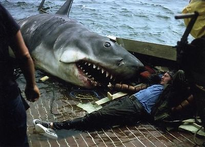 "Set Of 10 Jaws Movie 6"" x 4"" Behind The Scenes Photo Prints  Shark"