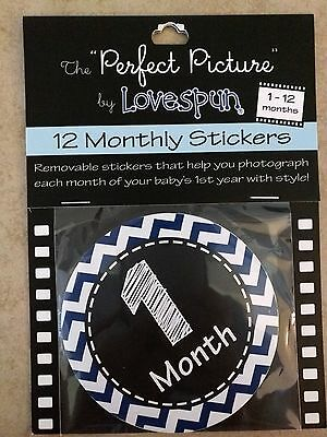The Perfect Picture by Lovespun 12 Month Sticker Set, Blue Chevron