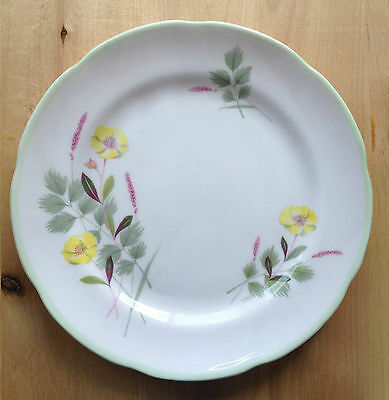 "Vintage ADDERLEY BONE CHINA 6"" Side Plate 1312 Pattern - England"