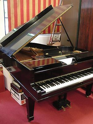 Julius Feurich Leipzig Player Grand Piano