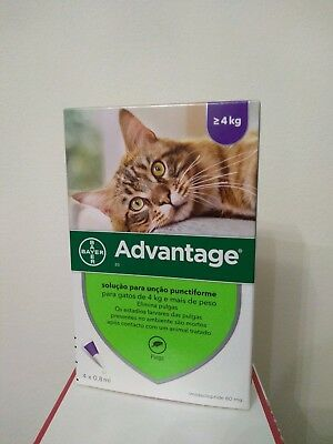 ADVANTAGE 80 bte de 4 pipettes anti puces chat/Cat + de  4 kg