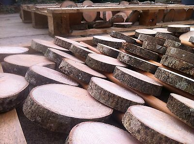 1x Real Rustic wood Log Slices Tree Ash piece Table Round Chic 11-12x2Cm