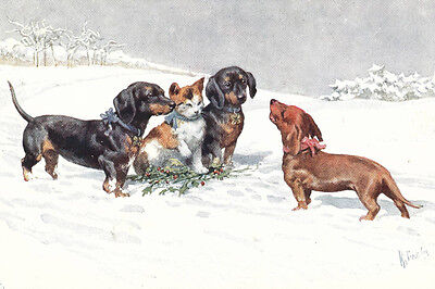Dachshund Dog Puppies & Kitten K Feiertag  LARGE New Blank Christmas Note Cards