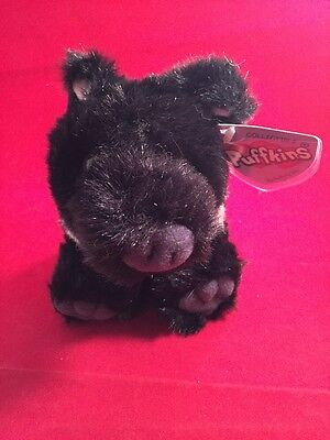 Rare 2001 SWIBCO Plush Beanie Puffkins Souie The Black Pig With Hang Tag.