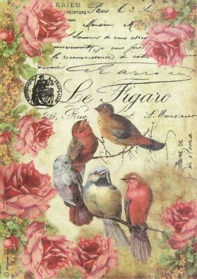Rice Paper for Decoupage Scrapbook Craft Sheet - Le Figaro Birds