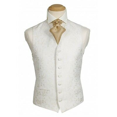 Ex Hire Waistcoat  Ivory Oragen Available size 24 to 60
