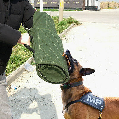Dog Training Bite Sleeve for Young Working Dogs Entry Level Training Green