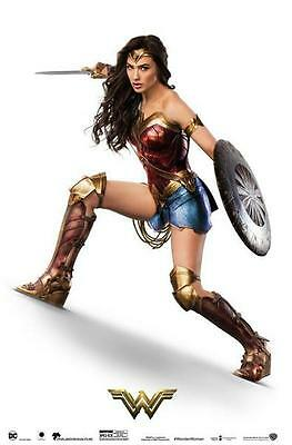 New Gal Gadot Movie Wonder Woman WONDER Fabric Art Canvas POSTER 18x12""