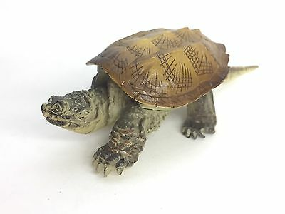 Kaiyodo Capsule Q Museum Miniature Figure Snapping Turtle Japan