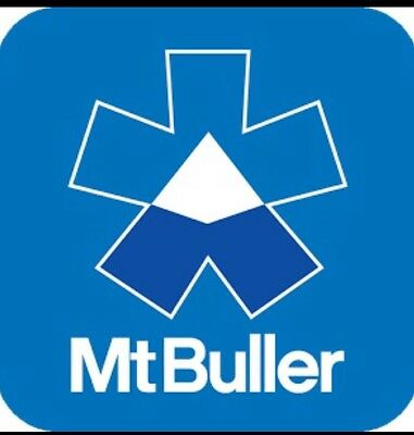 Mt Buller 25% Off Voucher For 3 Days Lift pass Up To 4 People Save $368
