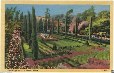 Los Angeles LANDSCAPE OF A CALIFORNIA HOME Vintage Linen Postcard Unposted