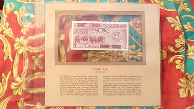 Most Treasured Banknotes Somalia 1983 5 Shillings P31a UNC Serie D003 or D004