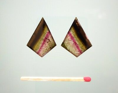 2 large Watermelon Tourmaline slices faceted - PAIR
