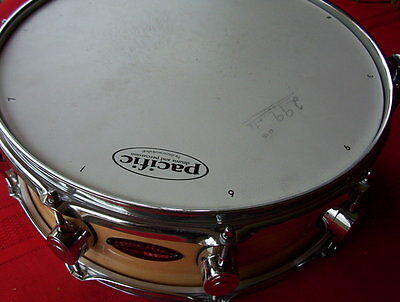 """Pacific  4 by 14"""" all maple snare drum SX series"""