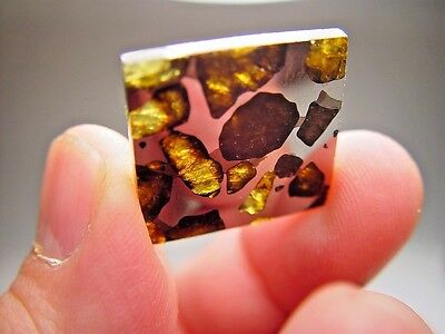 Great Deal! Outstanding Olivine! Gorgeous Imilac Pallasite Meteorite 7 Gms
