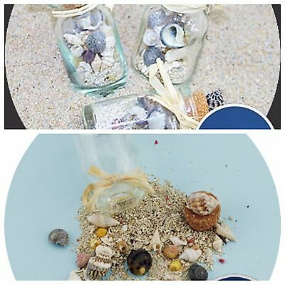 3 x Beach in a bottle  Micro shells and real beach sand inside small bottle
