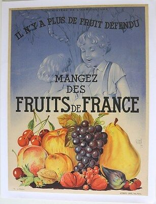 AFFICHE ORIGINALE ANCIENNE FRUITS de FRANCE 1934 ministère agriculture litho