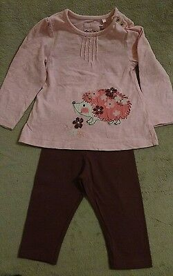 Baby Girls Tu Topembroidered Hedgehog Flower Detail & Next New Leggings.6-9 Mont