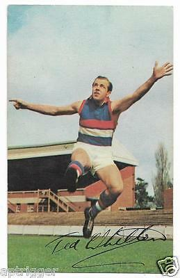 1965 Mobil Football Photo (40) Ted WHITTEN Footscray  ##