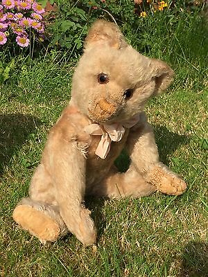 Pastel - Beautiful Rare PINK Early Farnell Mohair Teddy Bear Antique Old English