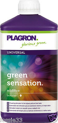 Plagron Green Sensation Top Activator - Flowering Booster 1 Litre