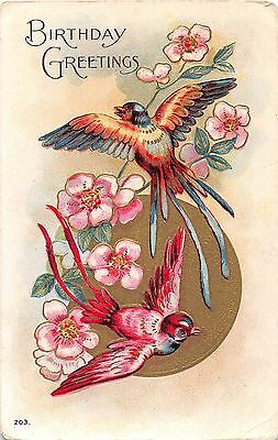 Vintage Postcard of Birthday Greeting with Flowers and Birds 1910's