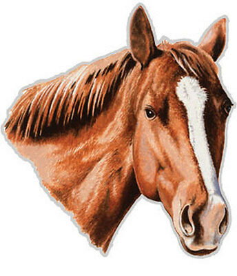 HORSE CAR TRUCK MAGNET Large Rivers Edge Art NEW Animal Pony Equestrian Decal