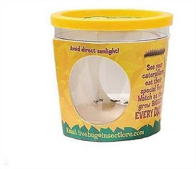 Insect Lore Live Butterfly Garden & Pavilion Refill Kit - 5 Caterpillars + Food