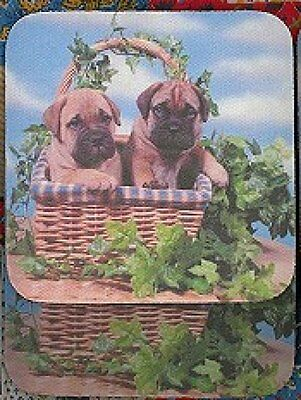 BULLMASTIFF PUPPIES Rubber Backed Coasters #0962