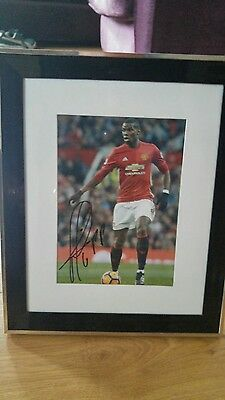 paul pogba manchester united signed framed photo 30x25