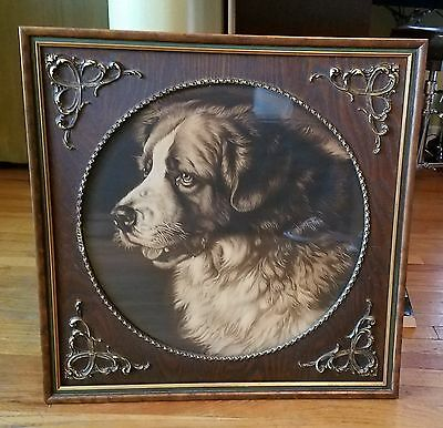 Antique Dog Lithograph in Antique wood Frame Bernese Mountain Dog Saint Bernard